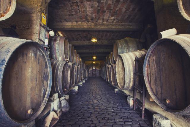 Bodega Monje - Weinfässer